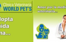 WORLD PET´S - Clínica Veterinaria, Bogotá